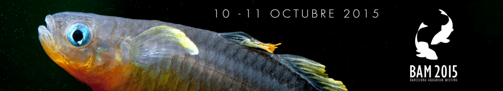 banner Barcelona Aquarium Meeting 2015 - pysogd